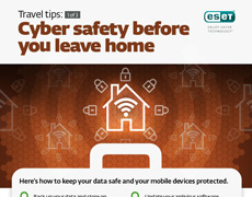 Cyber safety before you leave home